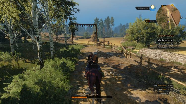 Witcher3ReviewIMG31