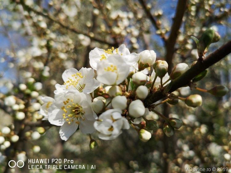 HuaweiP20Pro_1