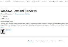 Prezentat prima dată la BUILD 2019, Windows Terminal e acum disponibil pentru download în Microsoft Store.