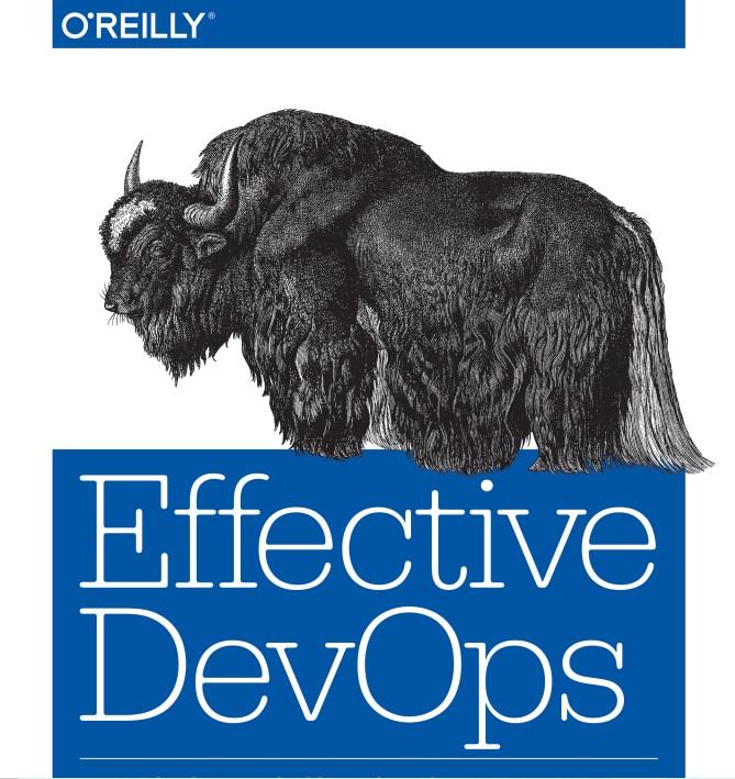 Effective DevOps - Building a DevOps Culture at Scale este o carte în care puteți descoperi cum să construiți o cultură DevOps sustenabilă în interiorul organizației.